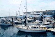 Marina and Restaurant
